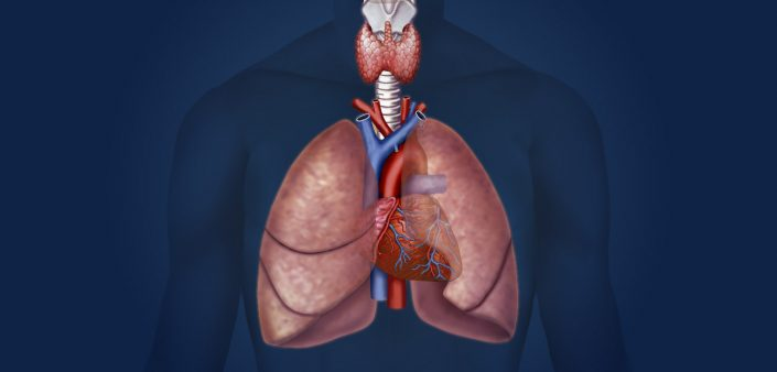 Complex Lung Function MedAlliance Cardiology Albury Wodonga Heart Specialist